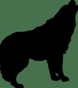 wolf-1247882__340